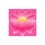 lotus_flower_pink_0-500